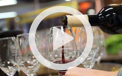 🍷 Dégustation des vins du Château Massamier La Mignarde